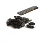 Fève de Tonka 50 gr et sa râpe