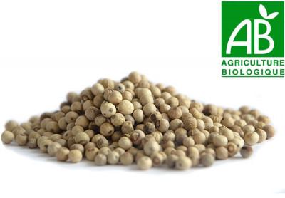 Poivre blanc bio de Penja 250 gr