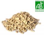 Graine de tournesol bio 100 gr